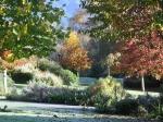 garden-autumn-25