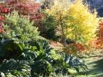 gallery-gardens10