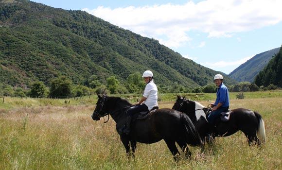 Baton Run Horse Trek & Farm Tour - Edenhouse Luxury Lodge, NZ
